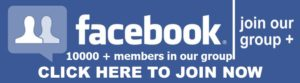 Employment News of Assam facebook group join now