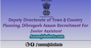 Directorate of Town & Country Planning, Dibrugarh Assam Recruitment