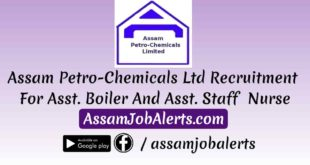 Assam Petro-Chemicals Ltd Recruitment For Asst. Boiler And Asst. Staff Nurse