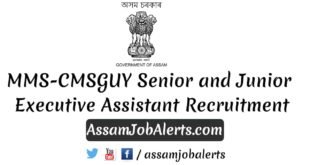 MMS-CMSGUY Senior and Junior Executive Assistant Recruitment