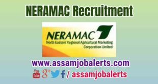 NERAMAC Recruitment of Administrative Officer, Manager, Advisor, Coordinator, Finance & Accounts, Advisor Seeds posts