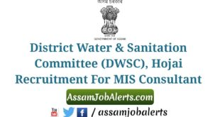 DWSC Hojai Recruitment For MIS Consultant