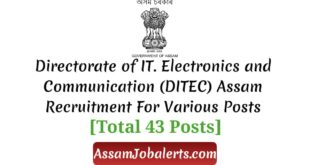 Directorate of IT. Electronics and Communication (DITEC) Assam Recruitment