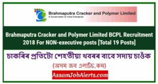 Brahmaputra Cracker and Polymer Limited BCPL Recruitment 2018 For NON-executive posts [Total 19 Posts]