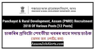 Panchayat & Rural Development, Assam (PNRD) Recruitment 2018 Of Various Posts [12 Posts]