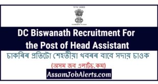 DC Biswanath Recruitment For the Post of Head Assistant