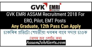 GVK EMRI ASSAM Recruitment 2018 For ERO, Pilot, EMT Posts - Any Graduate, 12th Pass Can Apply