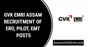 GVK EMRI ASSAM RECRUITMENT OF ERO, PILOT, EMT POSTS