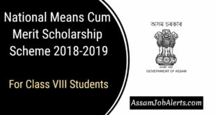 National Means-Cum-Merit Scholarship Scheme 2018-2019 For Class VIII Students.