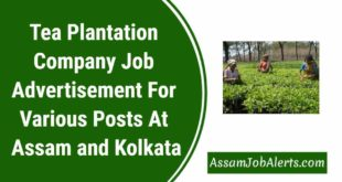 Tea Plantation Company Job Advertisement For Various Posts At Assam and Kolkata