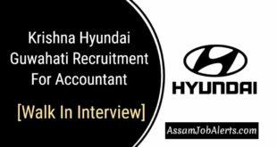 Krishna Hyundai Guwahati Recruitment For Accountant [Walk In Interview]
