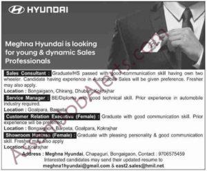 Meghna Hyundai Recruitment