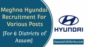 Meghna Hyundai Recruitment For Various Posts
