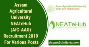 Assam Agricultural University NEATeHub (AIC-AAU) Recruitment 2019 For Various Posts.
